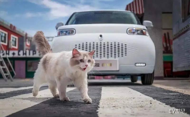 灵感源自猫,欧拉白猫续航401km预售7.58万-8.88万元